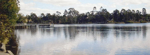 Forest Lake QLD
